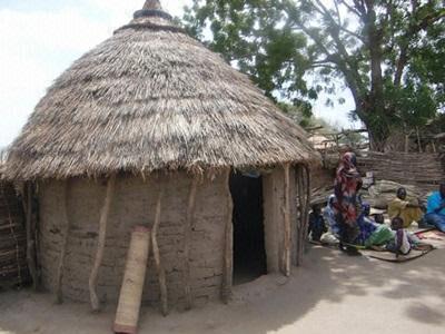 FNSチャリティ:2012年度支援国「チャド共和国」- フォトギャラリー - フジテレビ